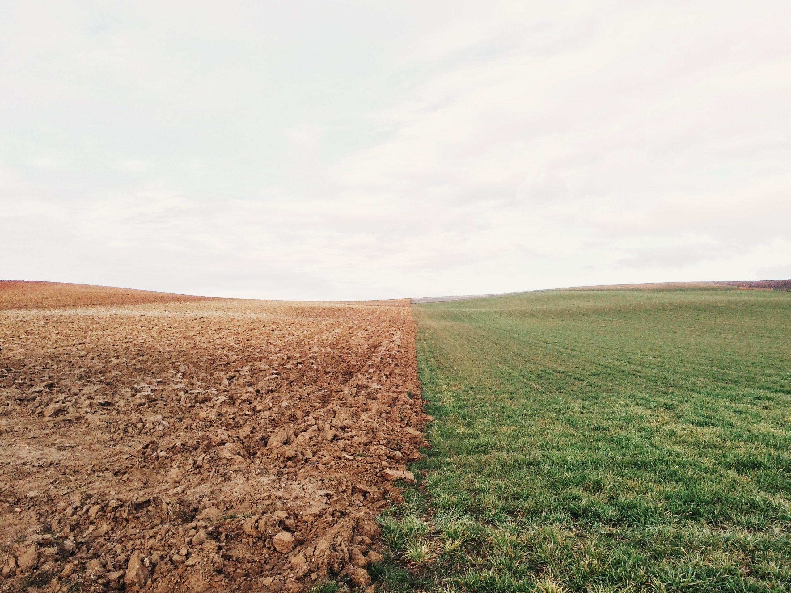 肥沃な大地と荒れ果てた大地