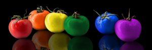 多彩な野菜