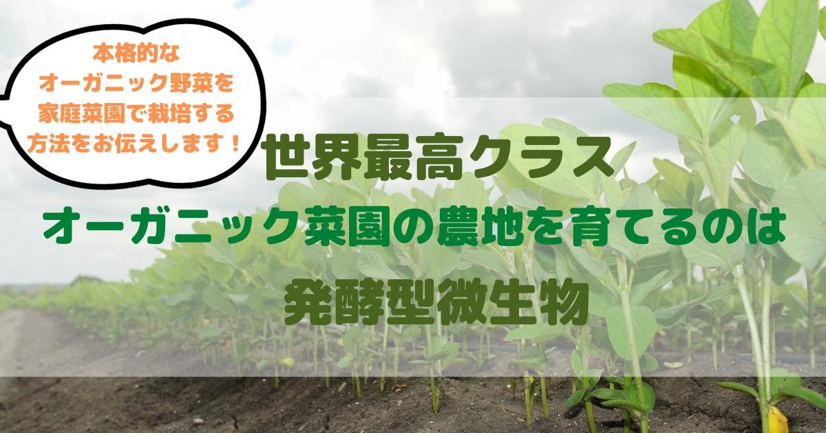 世界最高クラス オーガニック菜園の農地を育てるのは発酵型微生物