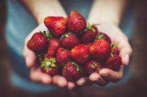 両手でイチゴをすくう